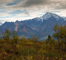 STOCK ~ Fall Reaches Towards The Chugach by Rick & Deb Larson