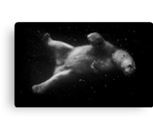 Polar Bear Dream Canvas Print
