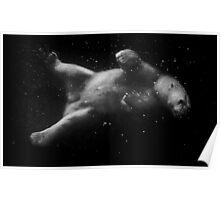 Polar Bear Dream Poster