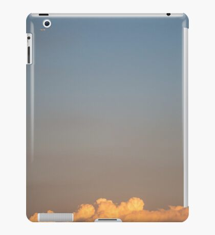 Scale iPad Case/Skin