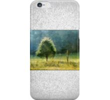 Cedar In Morning Light iPhone Case/Skin
