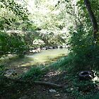 Troublesome Creek 12 by jheflinphotos