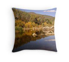 Snowy River, Snowy Mountains, Australia Throw Pillow