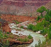Havasu Creek from Lower Navajo Falls  by Robert Meyers-Lussier
