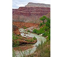 Havasu Creek from Lower Navajo Falls  Photographic Print