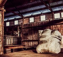 Woolshed Calendar 10 by Candice O'Neill