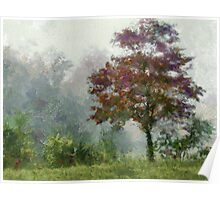 Tree In Lifting Fog Poster