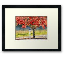 Blazing Bloody Red Dogwood By White Mailbox Framed Print