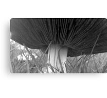 Black and White Mushroom Canvas Print