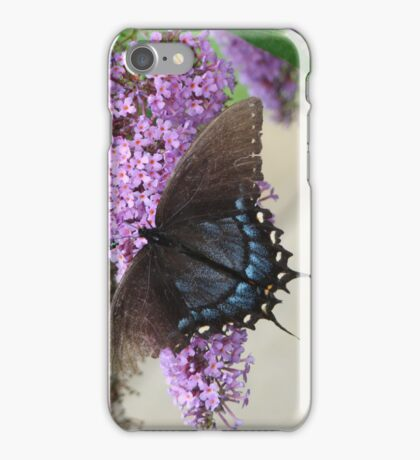 Battered Butterfly iPhone Case/Skin