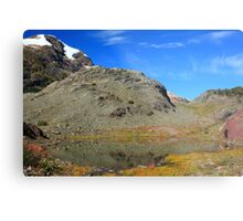 Glaciers and tarns III Metal Print