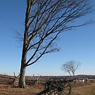 Cannon at Gettysburg by Theodore Kemp