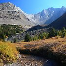 Arethusa creek and peaks by zumi