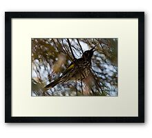 Singing to the Spring Framed Print