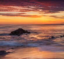 Collaroy Sunrise by Cat M