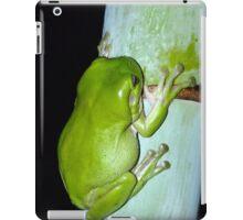 Frog iPad iPad Case/Skin