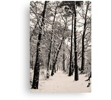 Snow Scene #4 Canvas Print