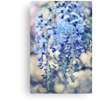 Wisteria Dreams at Twilight Canvas Print