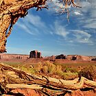 Monument Valley by Colin Bedson