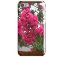 Crape Myrtle Blank P3F0 iPhone Case/Skin