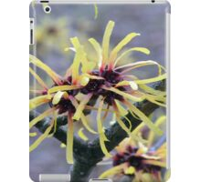 Witch Hazel iPad Case/Skin