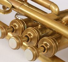 Vintage Brass Trumpet Valves and Tubes by rhamm