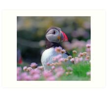 Puffin with flowers  Art Print