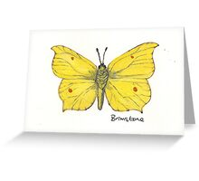 Brimstone butterfly. Greeting Card