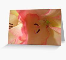 Pink Gladiola Close Greeting Card