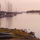 Morning mist across lake by Nadia Korths