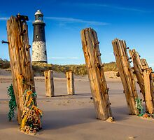 Spurn Point Lighthouse and Groynes by Tony Shaw
