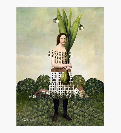The Gardener Photographic Print