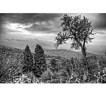 Chianti View Photographic Print
