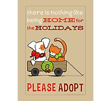 Patch & Rusty : Nothing like Home for Holidays Photographic Print
