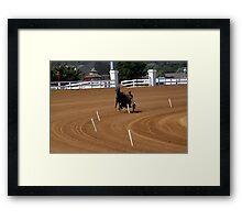 Black Horse Red Mile Practice Framed Print