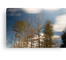 March Winds Canvas Print