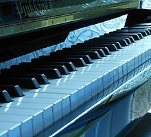 Blue Piano Keys by BlueMoonRose
