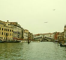 The Rialto Bridge, Venice by Joanna Rice