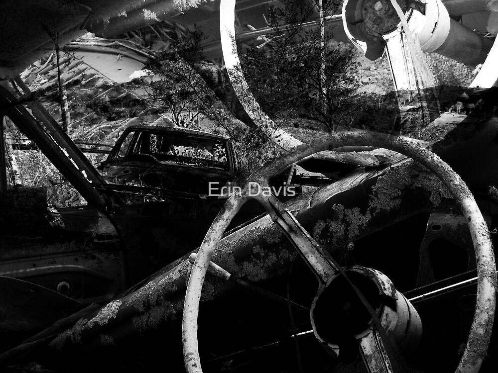 Wrecked - No.1 by Erin Davis