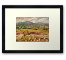 Alpine Garden - Mount Washington NH Framed Print