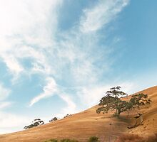 Dry California Countryside by visualspectrum