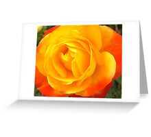 Yellow & Burnt Orange Rose Greeting Card