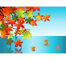 Autumn leaf reflection in water Photographic Print