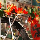 Bicycle Flowers by Rae Tucker