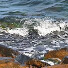 On the rocks by Heather Thorsen