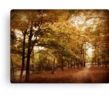 Autumn Corridor Canvas Print
