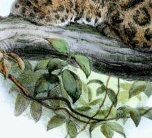 Formosan Clouded Leopard Sticker