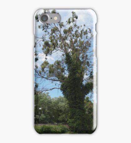Bowral iPhone Case/Skin