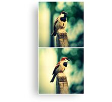 Birdie Collage Canvas Print