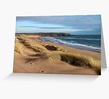 Beach, Forvie Nature reserve, Aberdeenshire Greeting Card